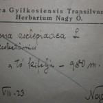 4. kep Jegyzet Flora Gyilkosensis